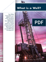 PPDM What is a Well