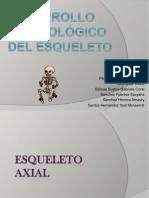 Ppt Desarrollo Esqueletico - Embriología