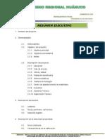 01 Resumen Ejecutivo Santa Isabel