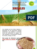 CLASE N° 1 29-04-14 Cereales.pptx