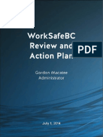 WBC Review and Action Plan