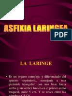 ASFIXIA LARINGEA.