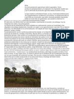 Actividad Agraria en La Argentina