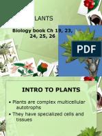 Biology Book Ch 19, 23, 24, 25, 26