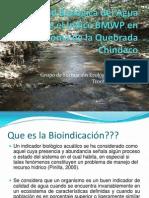 Calidad Biológica Del Agua Mediante El Índice BMWP CHINDACO