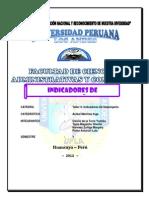 Trabajo Final Empresa Masderera Indicadores de Desempeño Imprimir