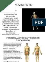 Planos y Movimientos Anatomicos