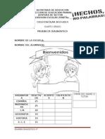 4o-diagnostico-2013 (1)