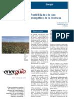 bib505_posibilidades_de_uso_energetico_de_la_biomasa