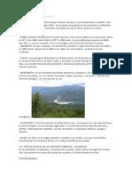 Ecorregiones Amazónicas Del Perú