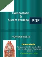 Homeostasis Kel 1