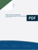 Perfil Comercial de Empresa Consultoria de Seguridad y Sis 2014-07-16