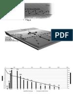 dinamicalitoral1.pdf