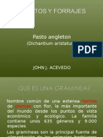 Pasto Angleton