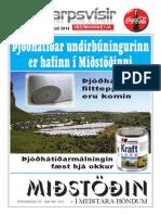 Sjónvarpsvísir / TVguide  17-23juli2014