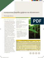 Konzumna Paprika Gajena Na Otvorenom (Tehnologija Prehrane) - YARA Program (31233)