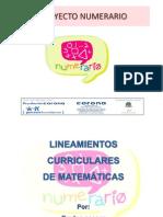 Presentación Lineamientos Curriculares 2011
