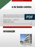Seminário de Saúde Coletiva (1) (1)