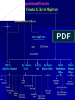 Collectorate Org Structure
