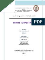 BIOMAS TERRESTRES (1)