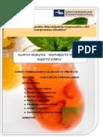2014-1 Formulacion de Proyectos_fimal
