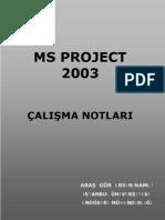 Ersin Namli-MS Project