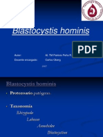 blastocystishominis-100206164909-phpapp01