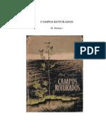 CAMPOS ROTURADOS.pdf