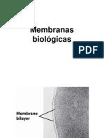2.1.Membranasbiologicas 24471