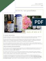 El Aceite de Árbol de Té y Sus Grandísimas Propiedades _ Biodendak