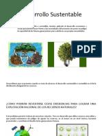 Desarrollo Sustentable KARLA