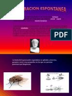 Ciencias Naturales (Generacion Espontanea)