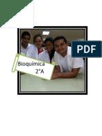 labo 1 de bioquimica