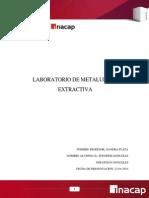2Informe Lab Metalurgia