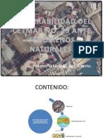 Vulnerabilidad Del Centro de Estudios Tecnológicos Del Mar