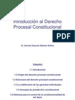 Introducción Al Derecho Procesal Constitucional