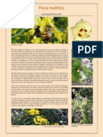 05 Flora Melifera