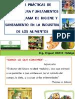 Buenas Prácticas de Manufactura y Lineamientos Del Programa