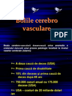 BVC_Curs1Final
