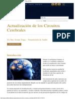 Actualización de Los Circuitos Cerebrales _ Fundación Hijos Del Sol