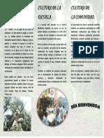 FORMATO BROSHURE 2
