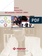 Manual Implementación Ohsas 18001