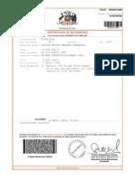 Certificado de Matrimonio Eliana Alvarado
