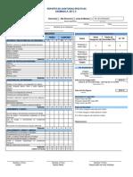 Formato Para Auditorias Efectivas