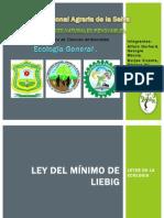 Ley Del Mínimo de Liebig