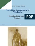 Clase5- Anatomia General