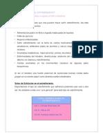 sales chussler  ESTRE_IMIENTO.pdf