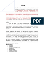Resumen Borrador-congreso de Extensión Universitaria2012-Meta,Animates Alta
