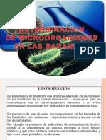 Microorganismos en Las Barabdas