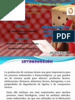 Exposicion Biotecnologia Alfa Amilasa